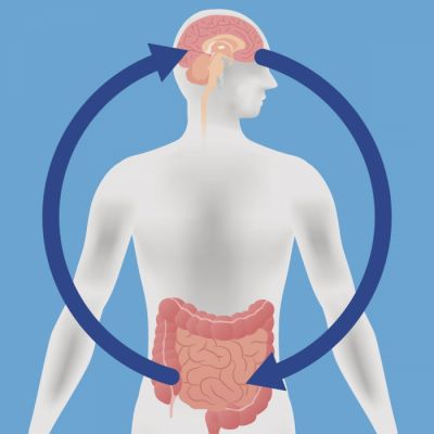 ⁣Probiotics may help boost mood and cognitive function