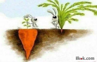 Bazen başarı göründüğü kadar değildir.